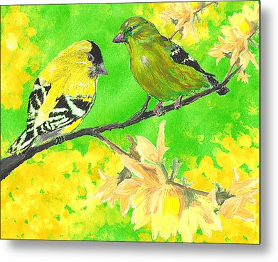 Goldfinches And Forsythia Metal Print by Forrest C Greenslade PhD
