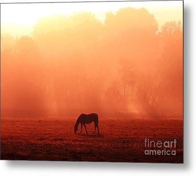 Good Morning Horse Metal Print by Erica Hanel
