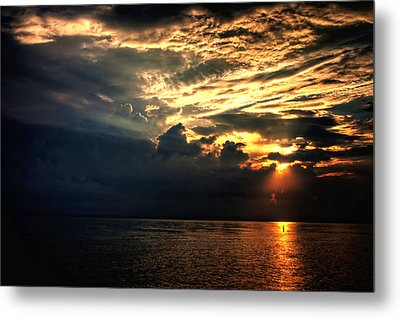 Metal Print featuring the photograph Good Morning by Joetta West
