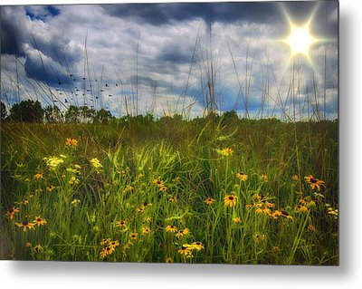 Good Morning Sunshine Metal Print by Bill Tiepelman
