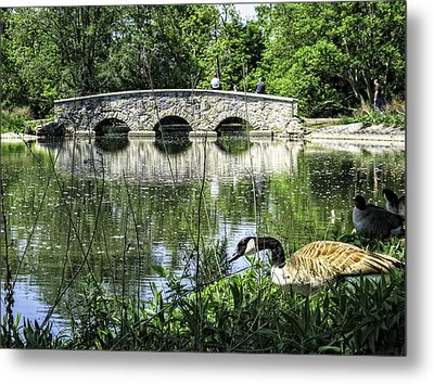 Metal Print featuring the photograph Goose And Bridge At Silver Lake by Tom Gort