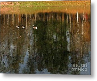 Goose Goose Duck Goose Metal Print by Trish Hale