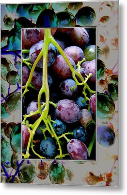 Gorgeous Bunch Of Grapes Metal Print by John Maloof