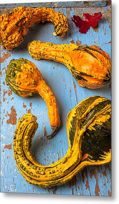 Gourds On Wooden Blue Board Metal Print by Garry Gay