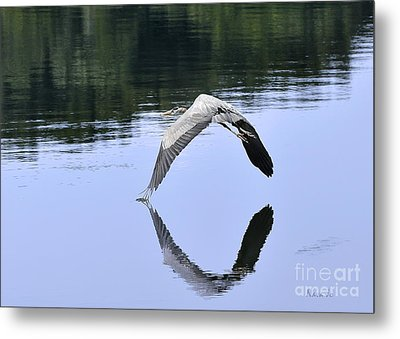 Metal Print featuring the photograph Graceful Heron by Nava Thompson