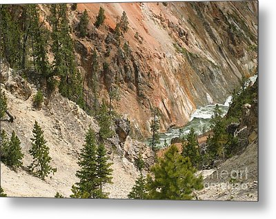 Grand Canyon And Yellowstone River Metal Print by Living Color Photography Lorraine Lynch