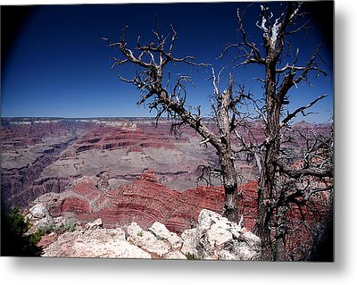 Metal Print featuring the photograph Grand Canyon Number One by Lon Casler Bixby
