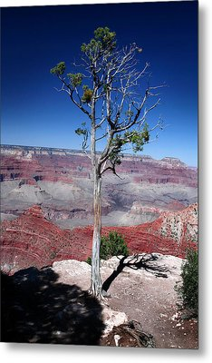 Metal Print featuring the photograph Grand Canyon Number Two by Lon Casler Bixby