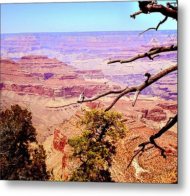 Metal Print featuring the photograph Grand Canyon by Rima Biswas