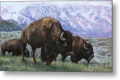 Grand Teton Bison Metal Print by Deb LaFogg-Docherty