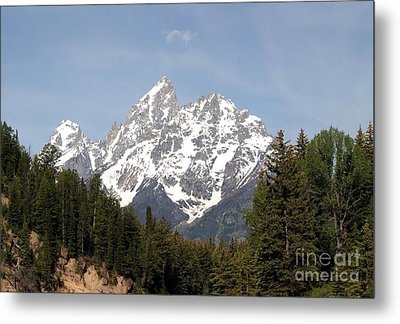 Grand Tetons Metal Print by Living Color Photography Lorraine Lynch