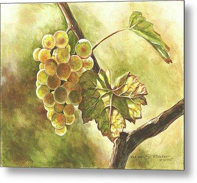 Grapes Metal Print by Deb Richter