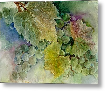 Grapes II Metal Print by Judy Dodds