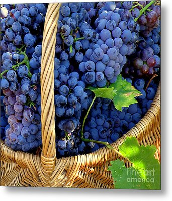 Grapes In A Basket Metal Print by Lainie Wrightson