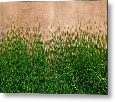 Metal Print featuring the photograph Grass And Stucco by David Pantuso