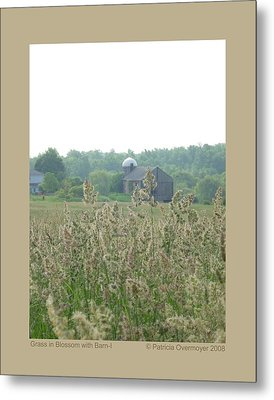 Metal Print featuring the photograph Grass In Blossom With Barn-i by Patricia Overmoyer