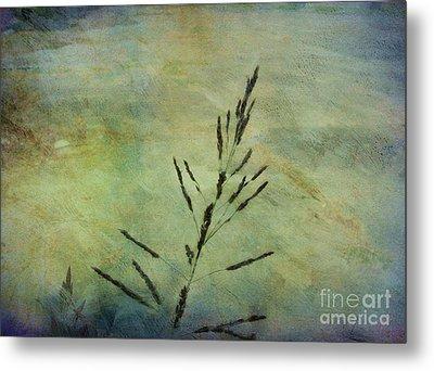 Grass Stem Metal Print by Judi Bagwell