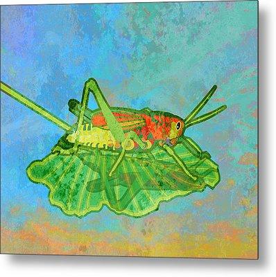 Grasshopper Metal Print by Mary Ogle