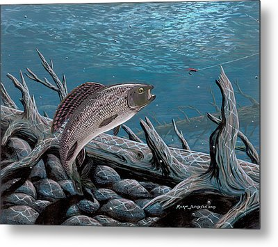 Grayling Metal Print by Kurt Jacobson