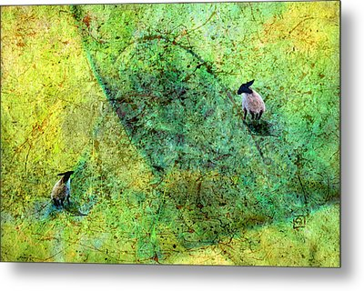 Grazing The Pollock Field Metal Print by Jean Moore
