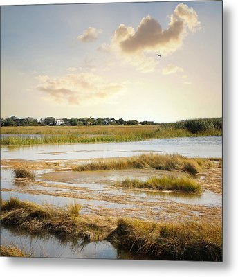 Great Marsh Ll Metal Print by Karen Lynch