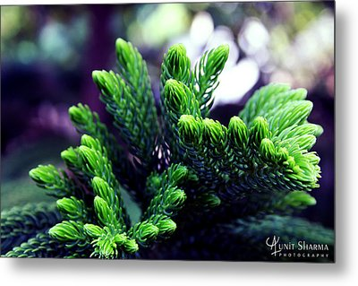 Green Metal Print by Aunit Sharma