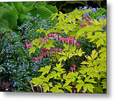 Metal Print featuring the photograph Green Bay Botanical Gardens by Judy  Johnson