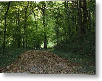 Green Cemetery Road Metal Print by James Collier