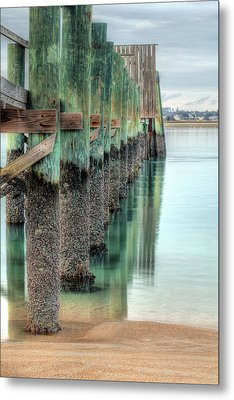 Green Day Metal Print by JC Findley