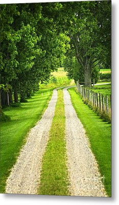Green Farm Road Metal Print by Elena Elisseeva