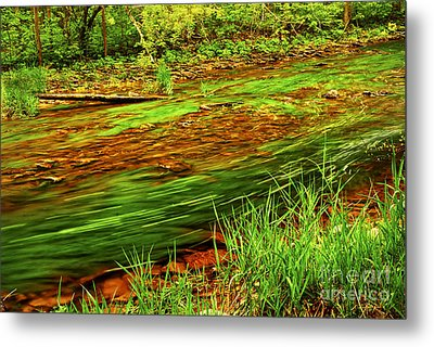 Green Forest River Metal Print by Elena Elisseeva