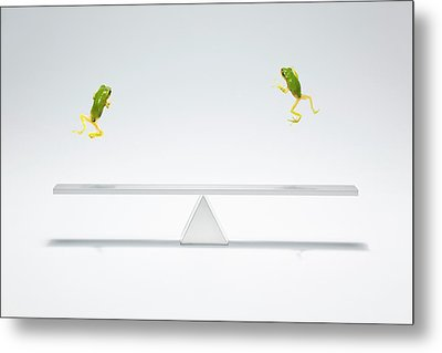 Green Frog Flying Over The  Seesaw Metal Print