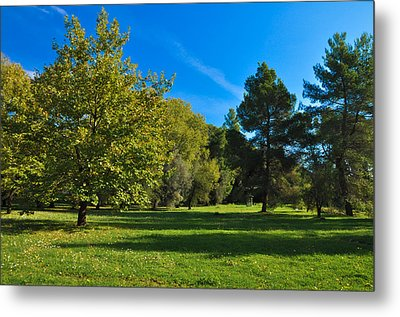 Green Oasis Metal Print by Stavros Argyropoulos