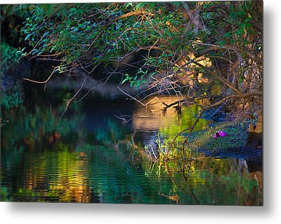 Green Reflections Metal Print by Dorothy Cunningham