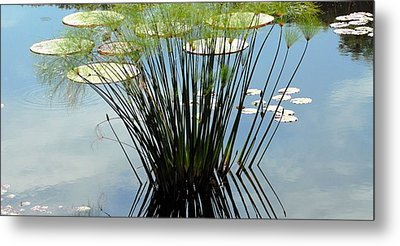 Green Shade Metal Print by