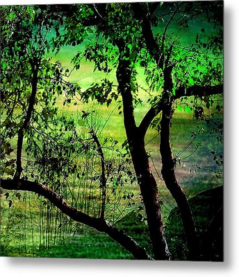 Green Metal Print by Shirley Sirois
