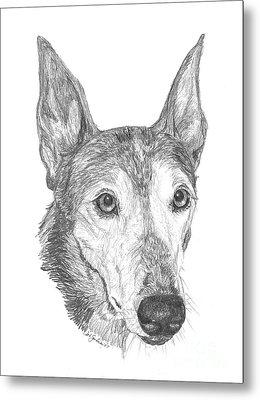 Greyhound Metal Print by Deb Gardner