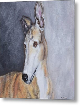 Greyhound In Thought Metal Print by George Pedro