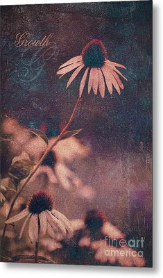 Growth  Metal Print by Aimelle