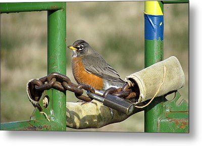 Metal Print featuring the photograph Guardian Of The Gate by I'ina Van Lawick