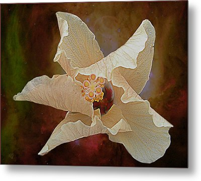 Hibiscus Floats In Space Metal Print by Barbara Middleton