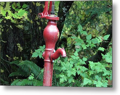 Metal Print featuring the photograph Hand Water Pump by S and S Photo