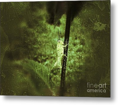 Hanging On Metal Print by Christy Bruna