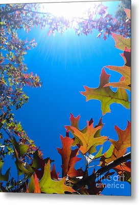 Happy Autumn Metal Print by CML Brown