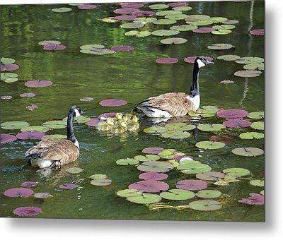 Happy Family Metal Print by Mary Zeman