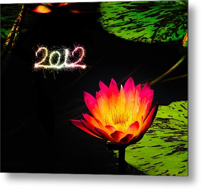 Happy New Year 2012 Metal Print by Michael Taggart