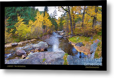 Happy Place In The Woods Panorama Poster  Metal Print by James BO  Insogna