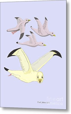 Happy Seagulls Metal Print by Fred Jinkins