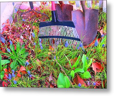 Metal Print featuring the photograph Happy Spring II by Ann Johndro-Collins