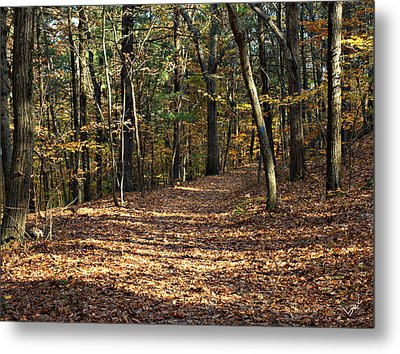 Happy Trails Metal Print by Bruce Carpenter